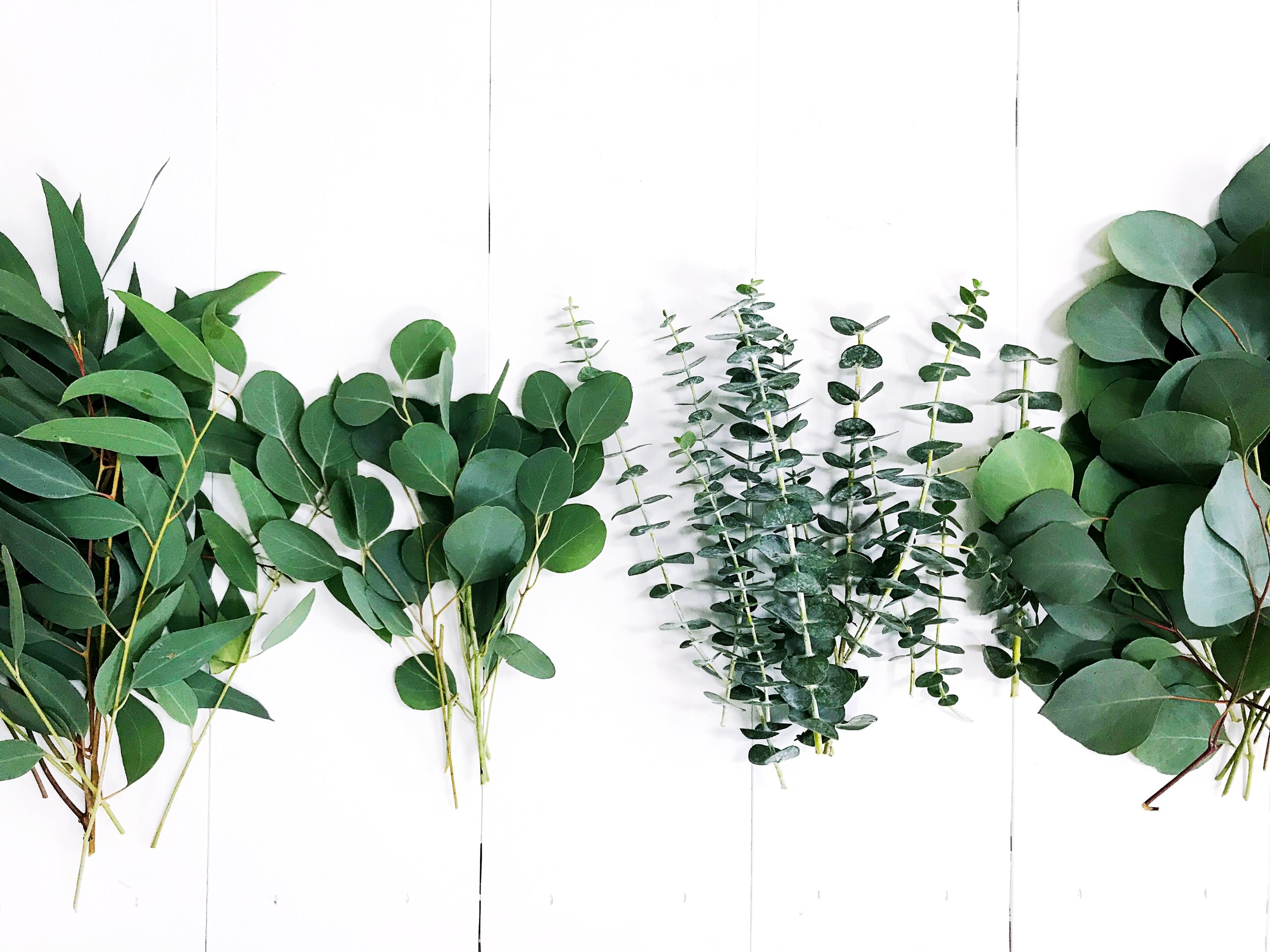 The Paper + Craft Pantry Blog: Do-It-Yourself Christmas Greenery Garland