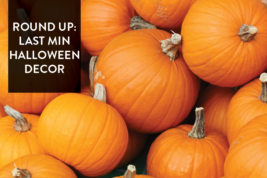 Paper Craft Pantry blog round up of easy halloween party decoration ideas!