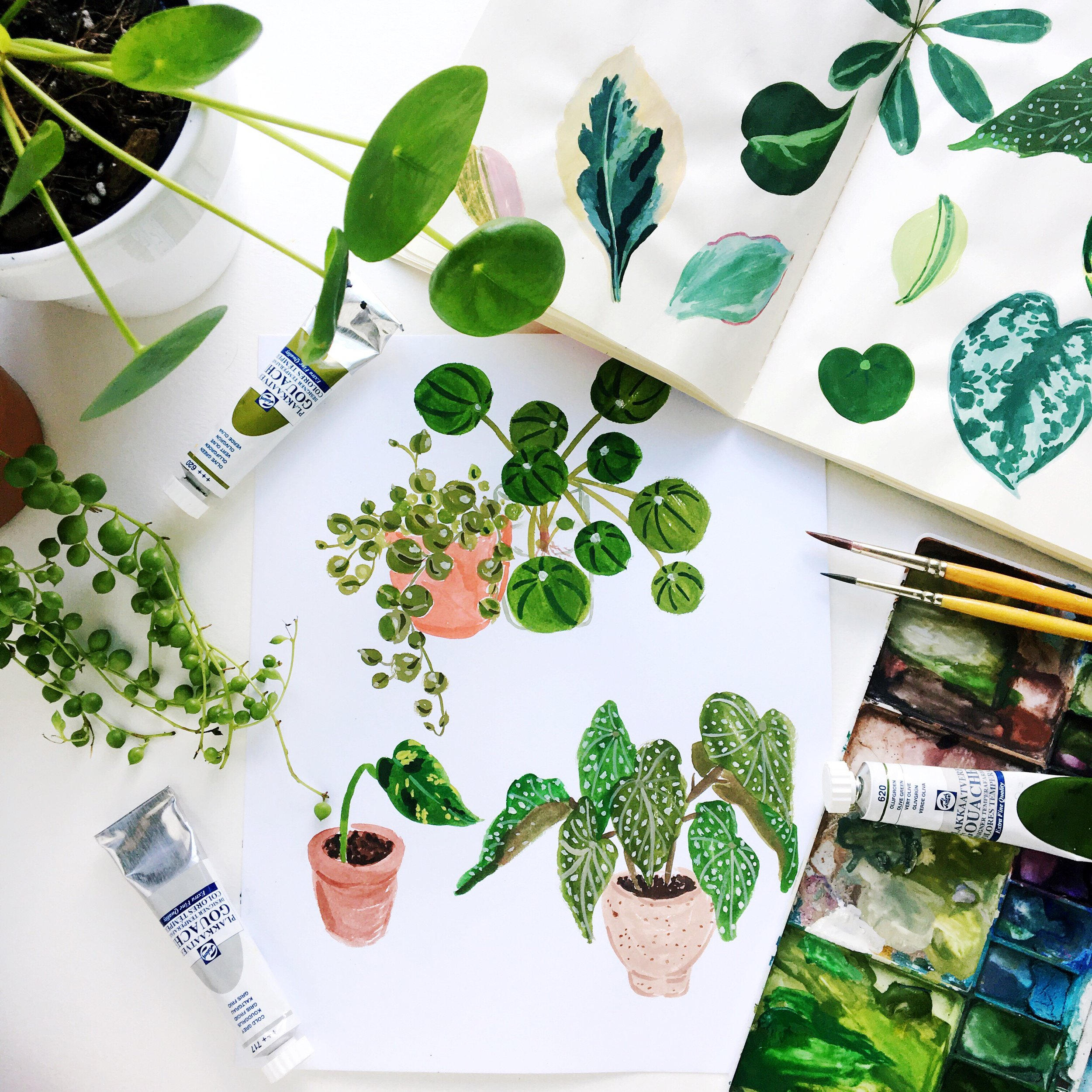 papercraftpantry-workshops-intro-to-gouache-painting-plants.jpg