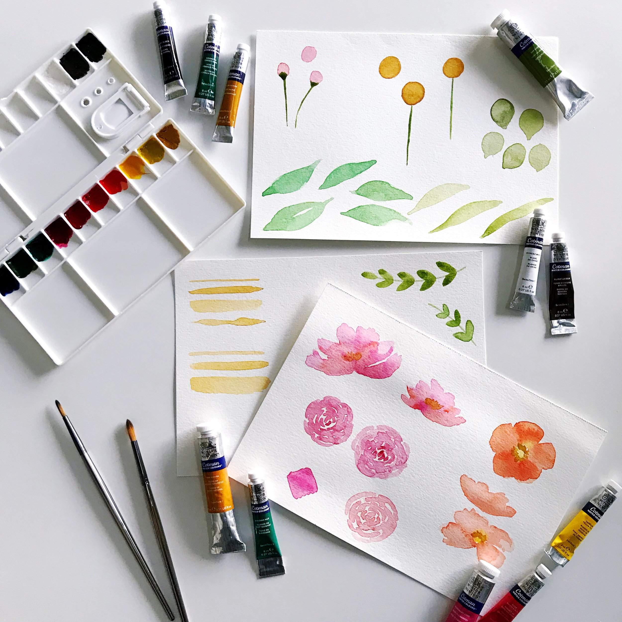 papercraftpantry-workshops-watercolorflowers-beginner.jpg