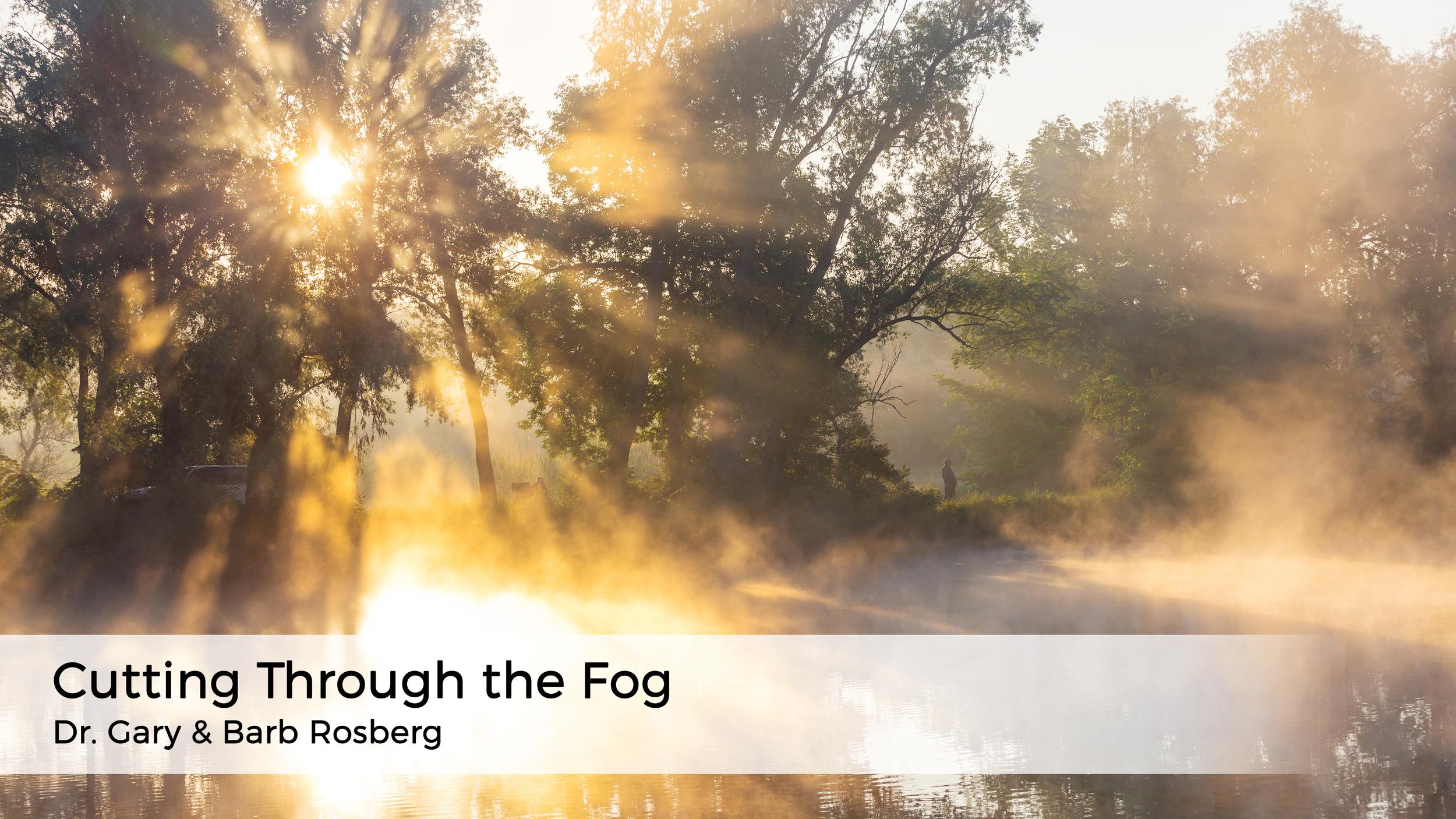 cutting-through-the-fog-americas-family-coaches-blog