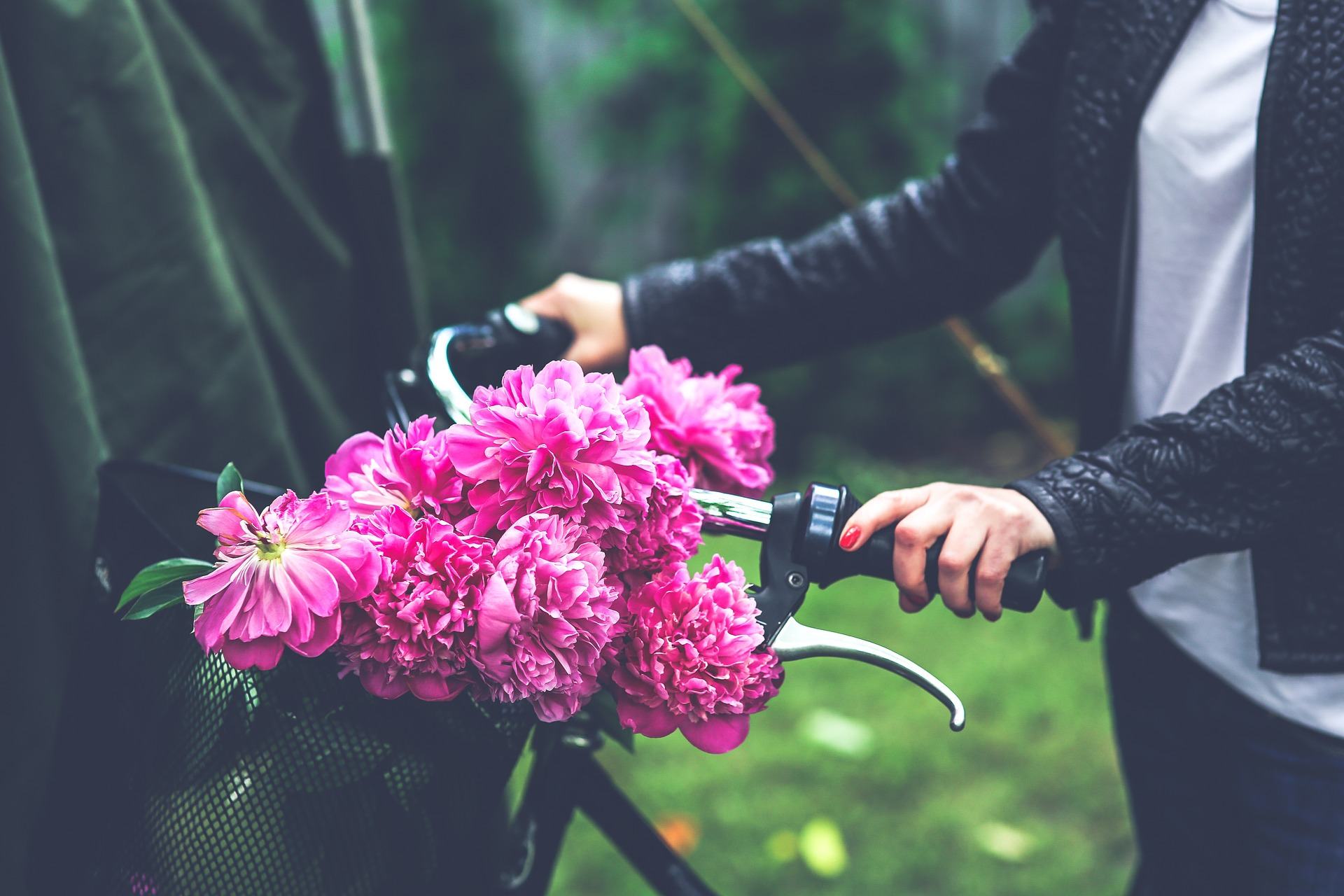 help-from-the-love-lab-flowers-bike-bicycle-Americas-Family-Coaches-radio-audio-podcast