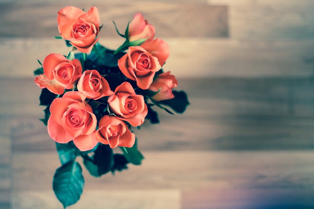 bouquet-roses-americas-family-coaches-keep-romance-alive-valentines-day