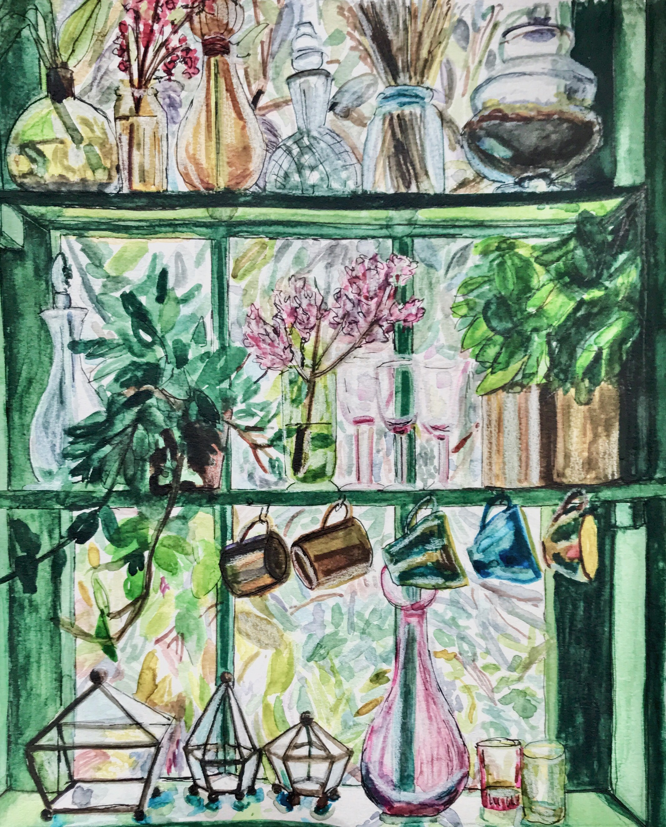 Window Jungle