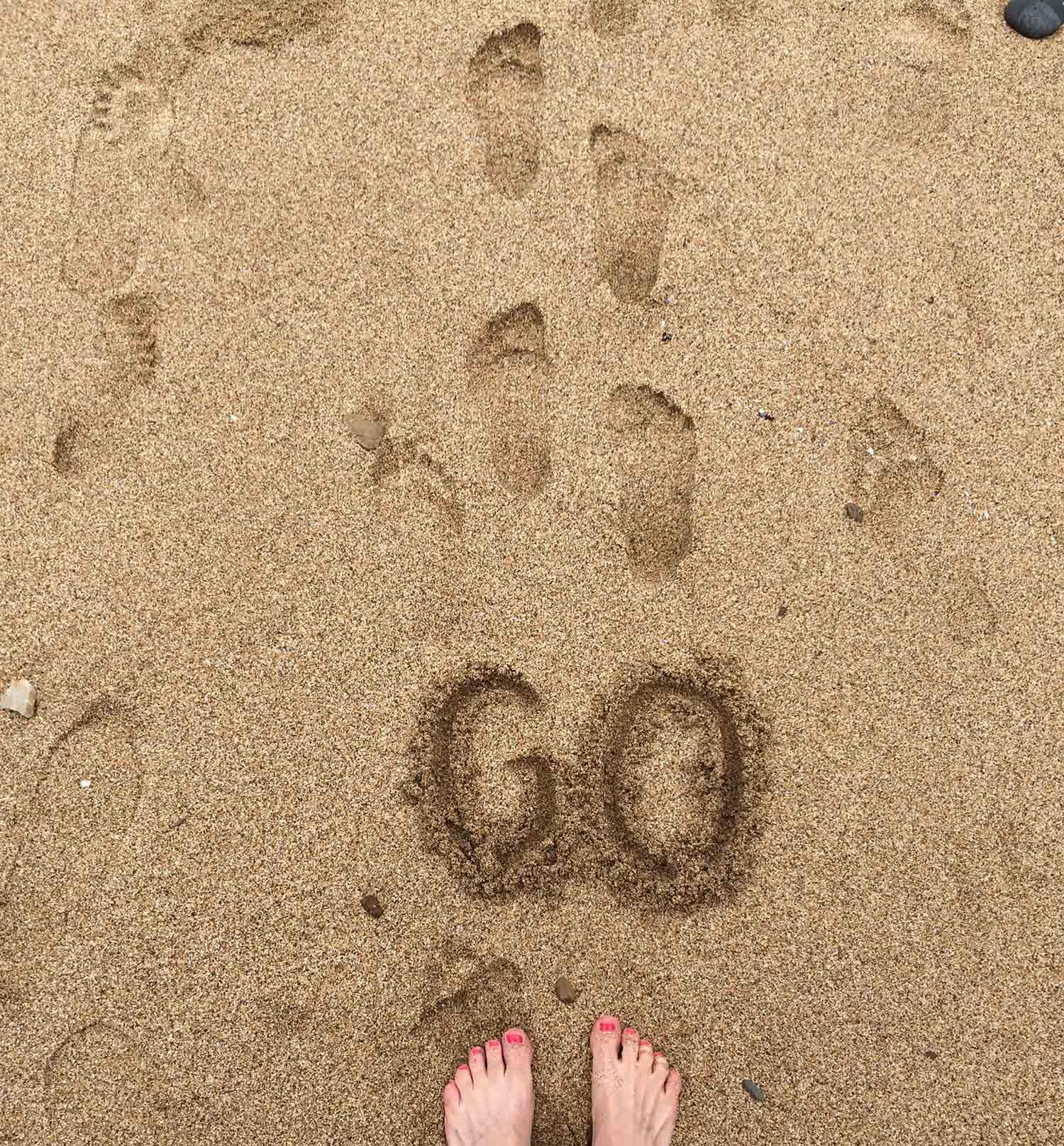 GO_OPT.jpg