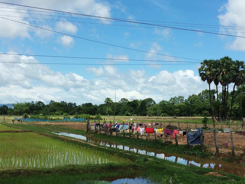Clothesline-Cambodia.jpg