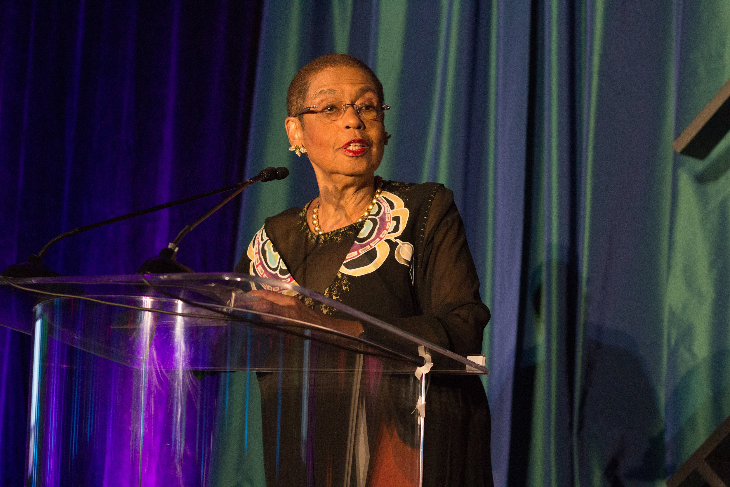 The Honorable Eleanor Holmes Norton was in the building (D, DC).