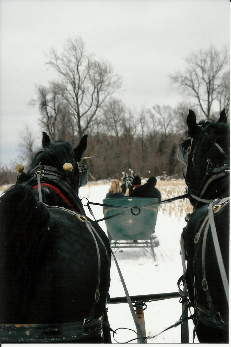 Sleigh Carriage Rides Ma Pa S