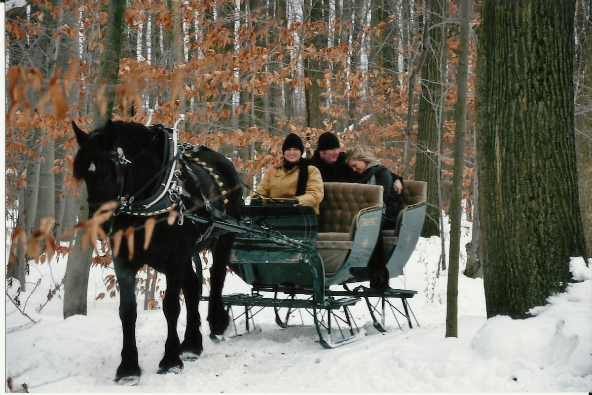 sleigh rides three.jpg