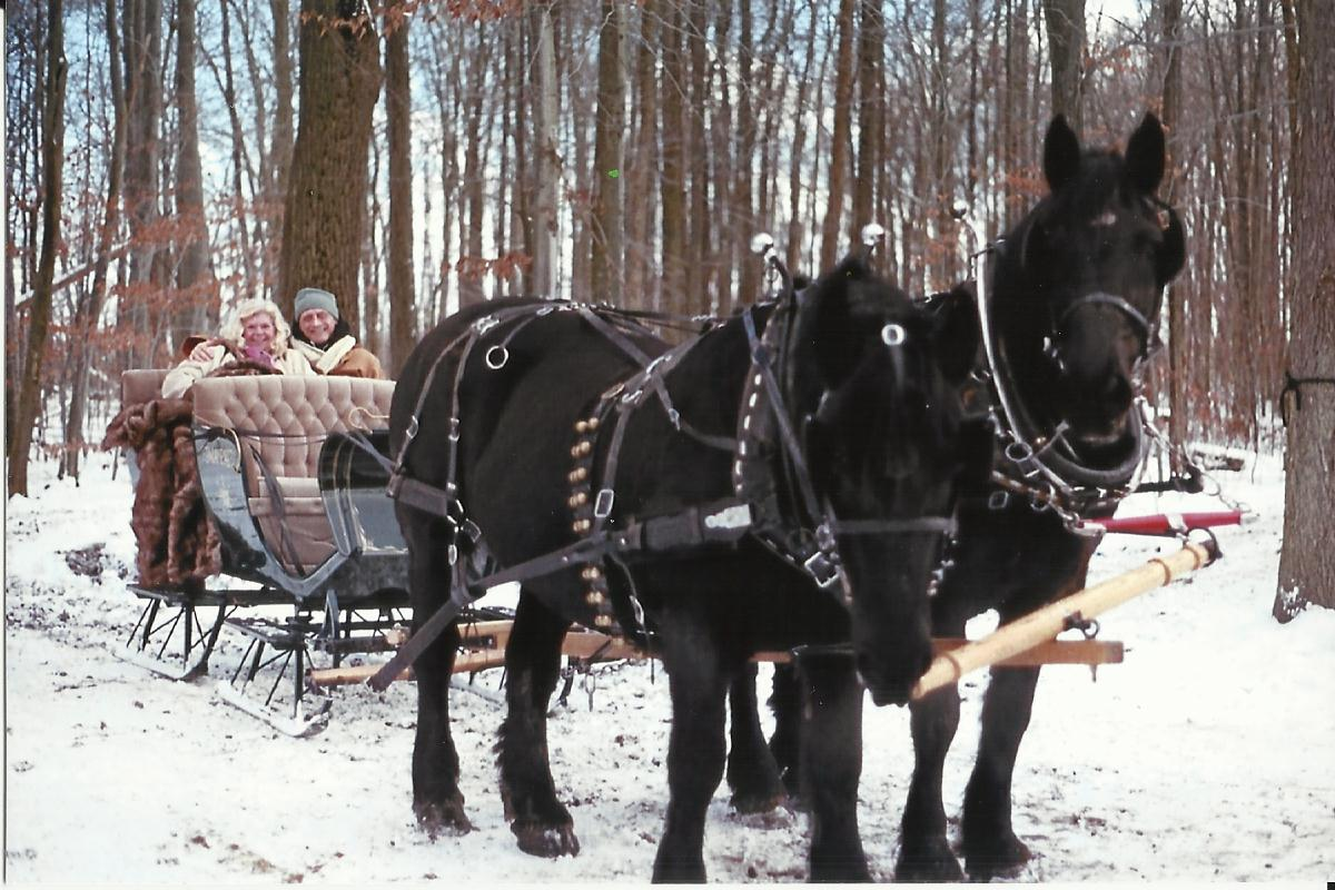 sleigh page photo fifteen.jpg