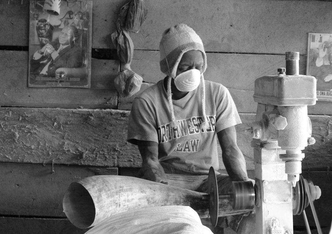 ankole cow horn artisan cutting raw horn