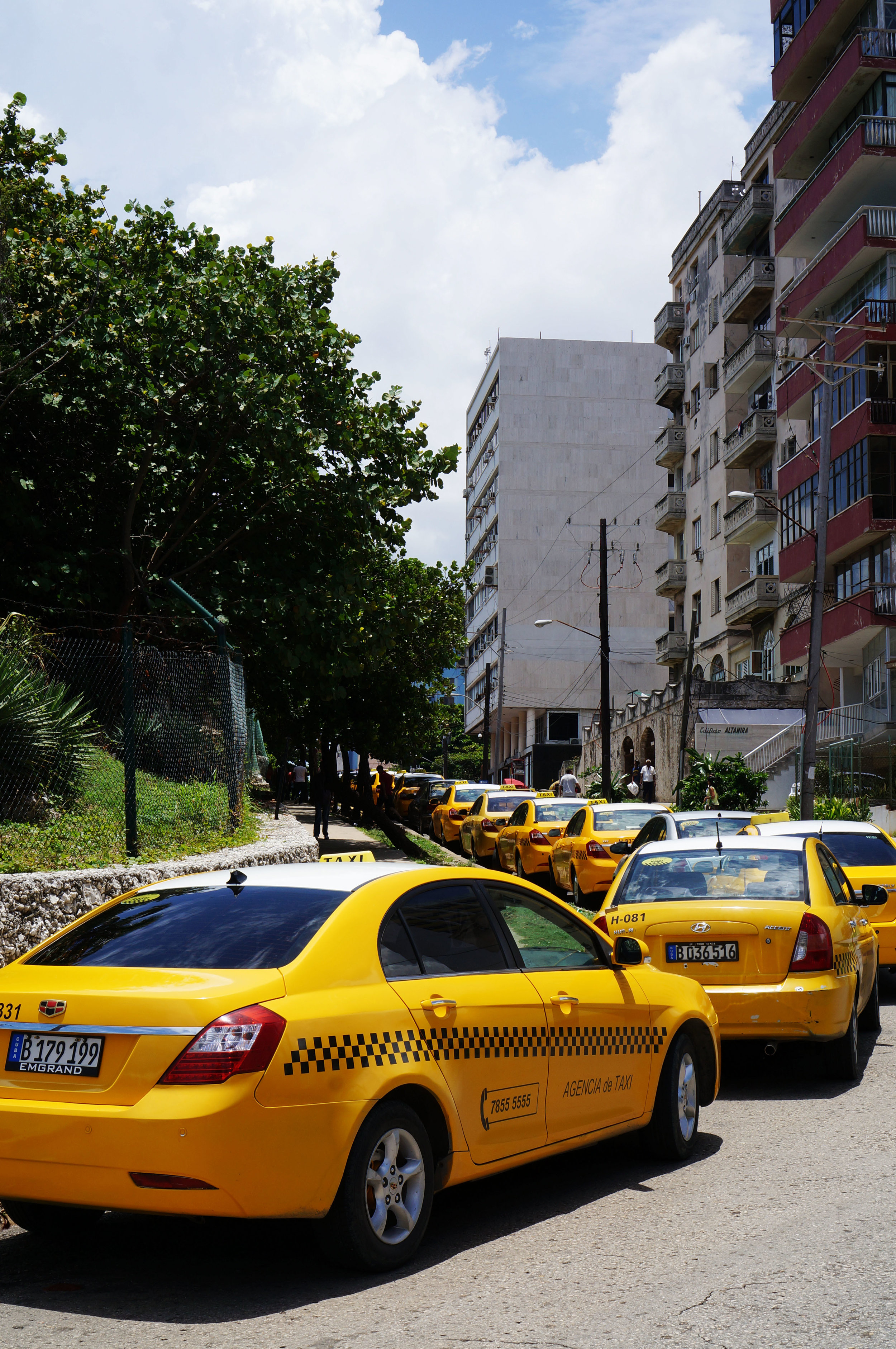 Taxis waiting for tourists just beyond view.