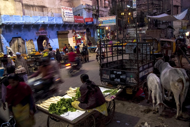 INDIA, JODHPUR (THE BLUE CITY)