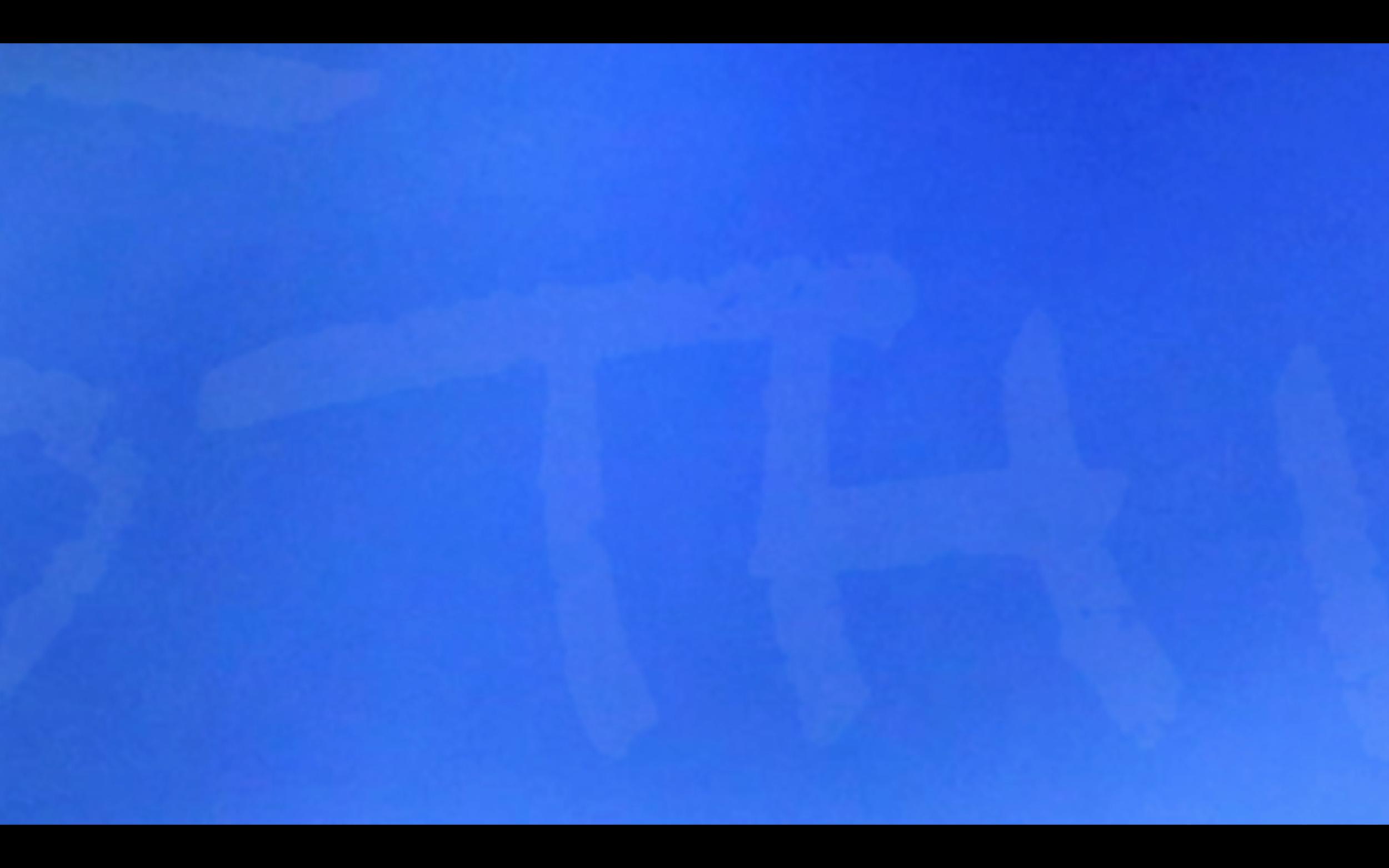 Screen Shot 2018-11-22 at 12.00.37.png