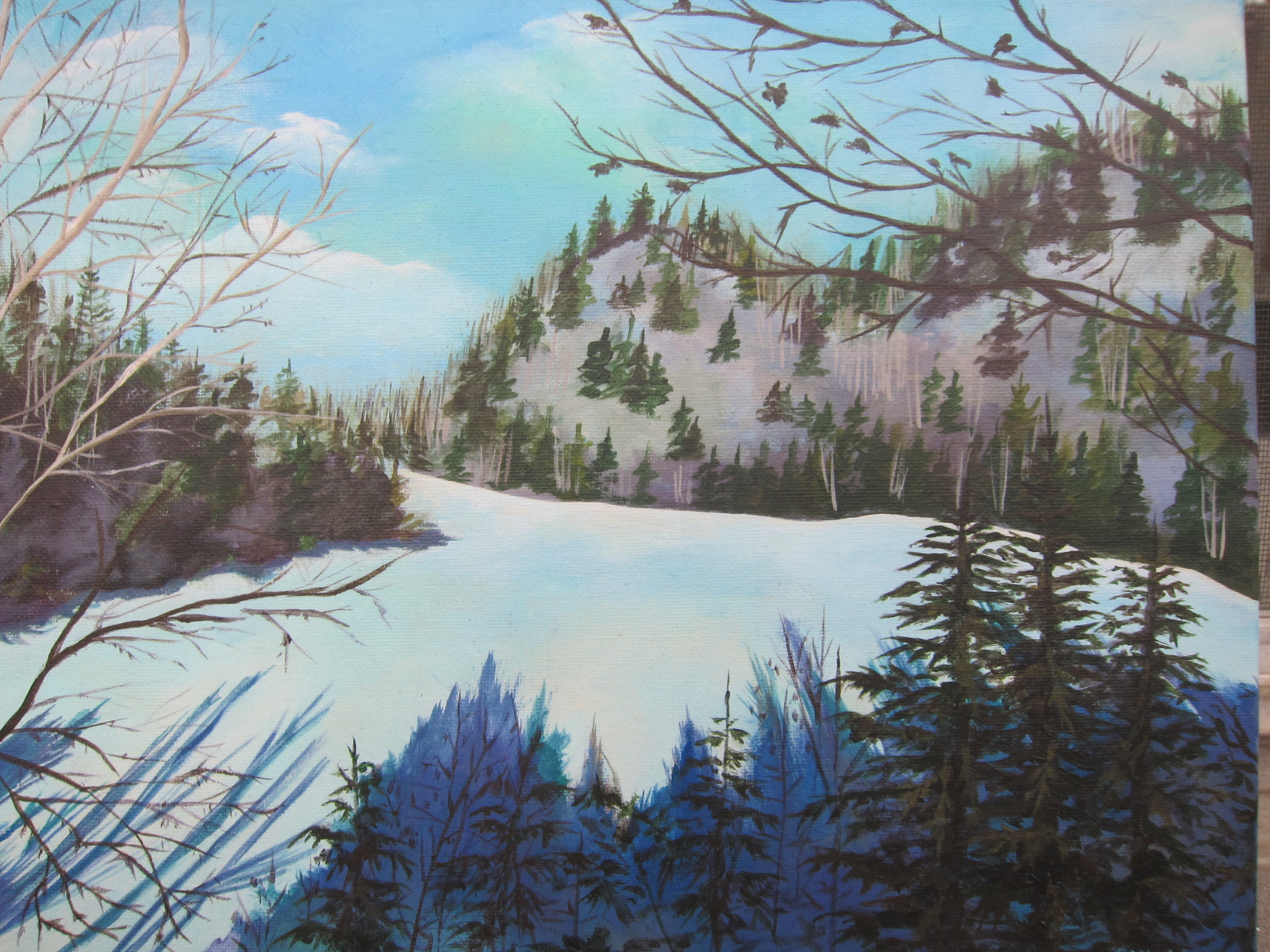 Into the woods: Aqua ice
