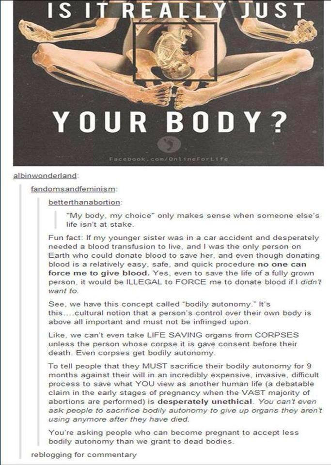 The commentary is what I identify with, not the image. I am hard core pro choice.