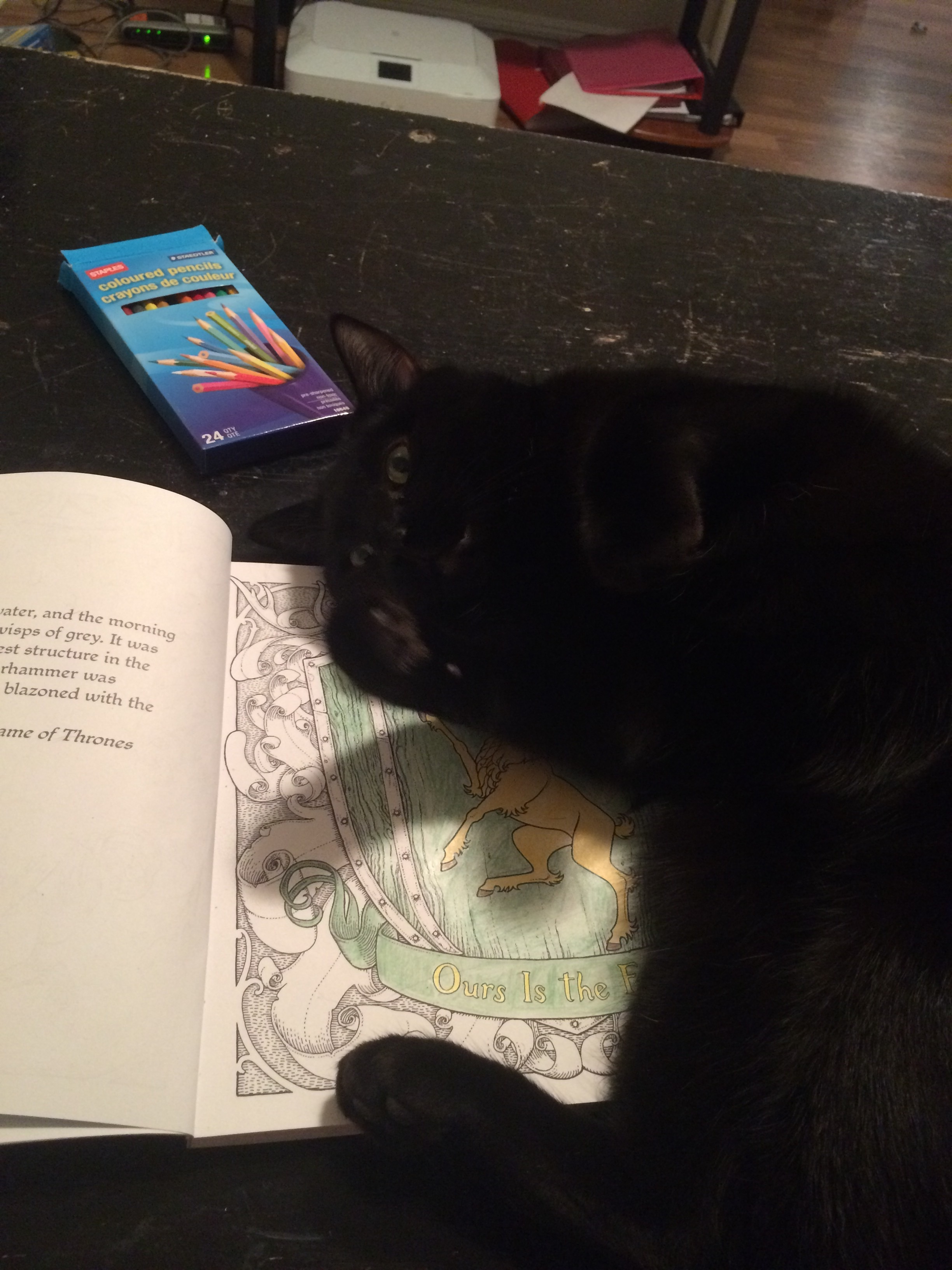 He determined that my Game of Thrones colouring book needed to go away.
