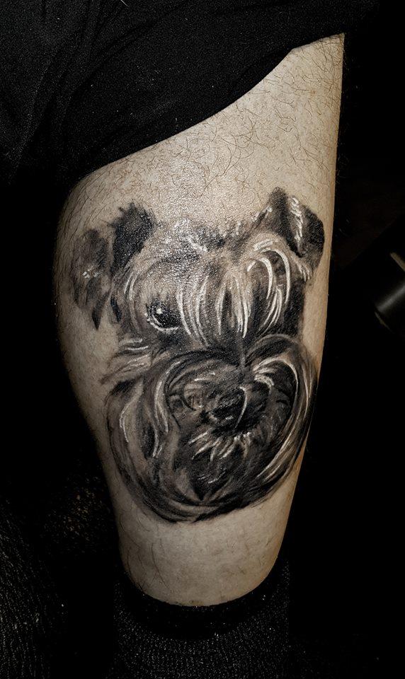 whitedog.jpg