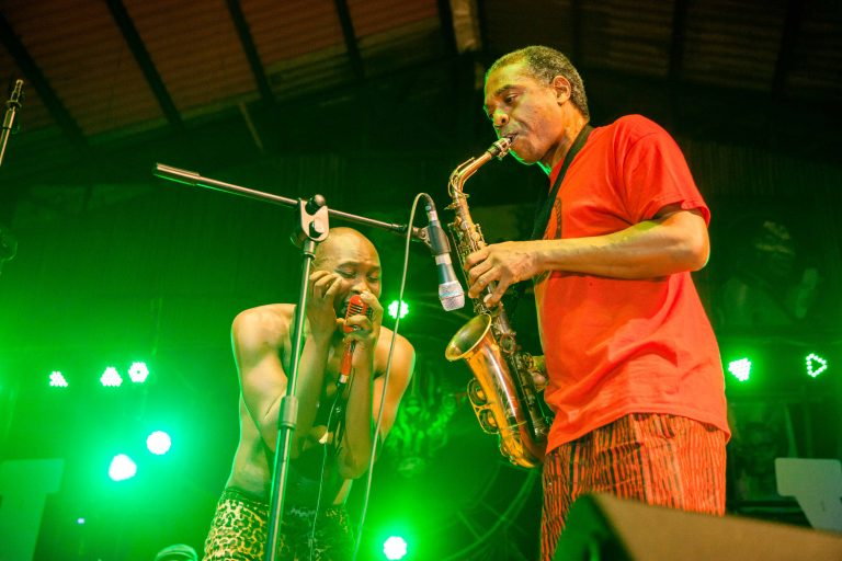 Seun and Femi Kuti Performing on Stage at Felabration 2016 // Source: www.thesoleadventurer.com/