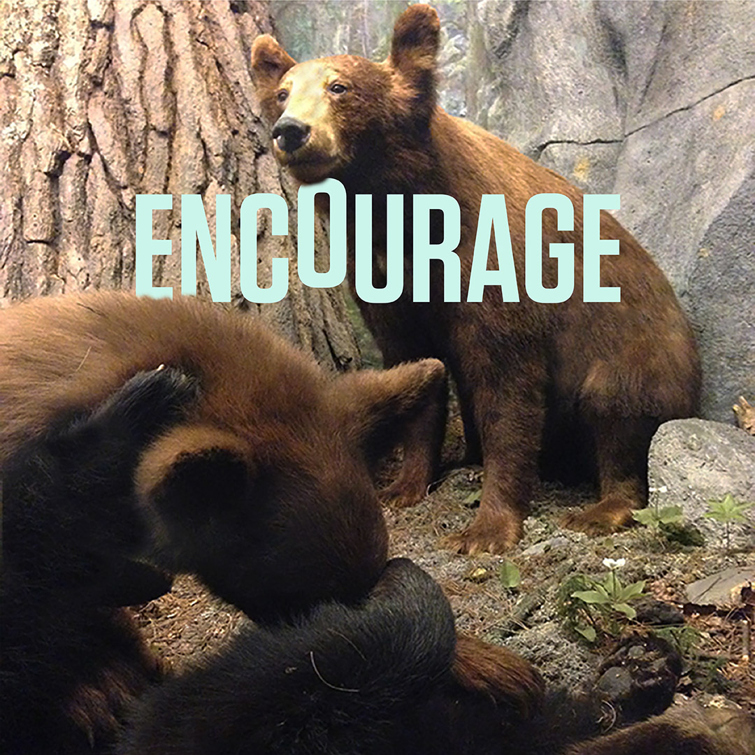 Encourage.Type.png