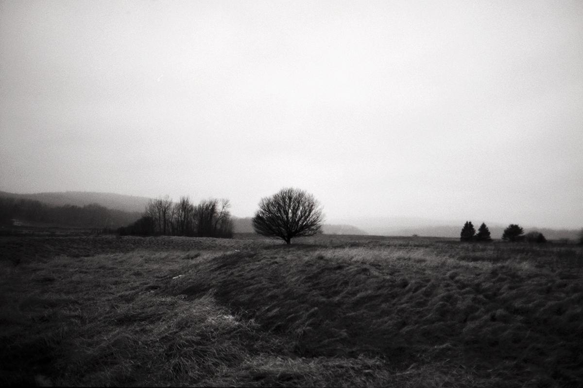 solitary4800.jpg