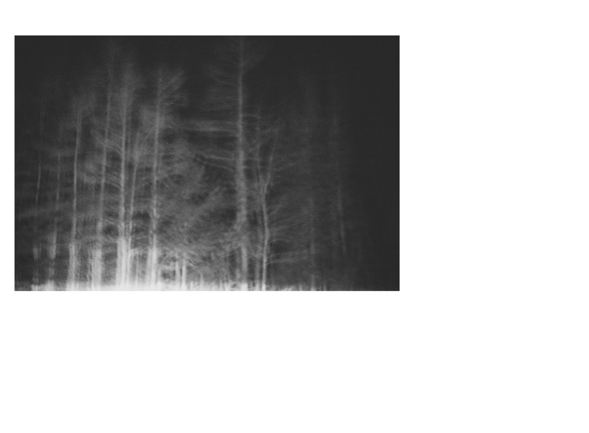 test31a.jpg