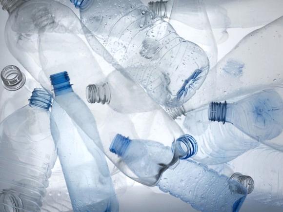 BPA Health issues .jpg