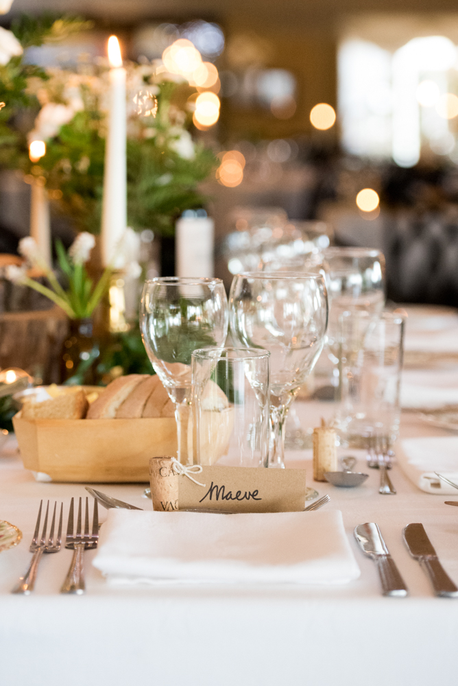Brian and Maeve's wedding, April 2017 (1415.2).jpg
