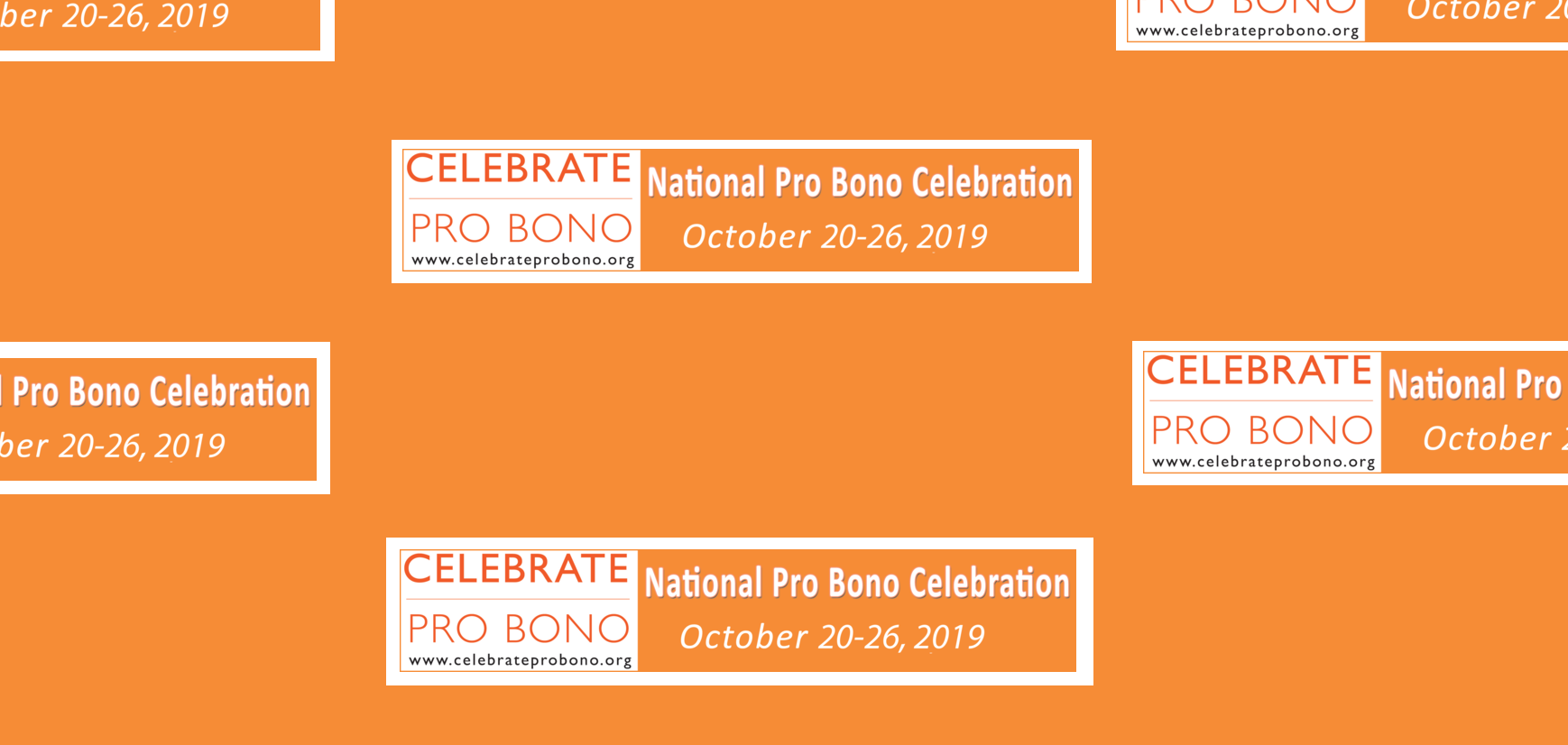 Celebrate National Pro Bono Week with VLJ    Find Out More