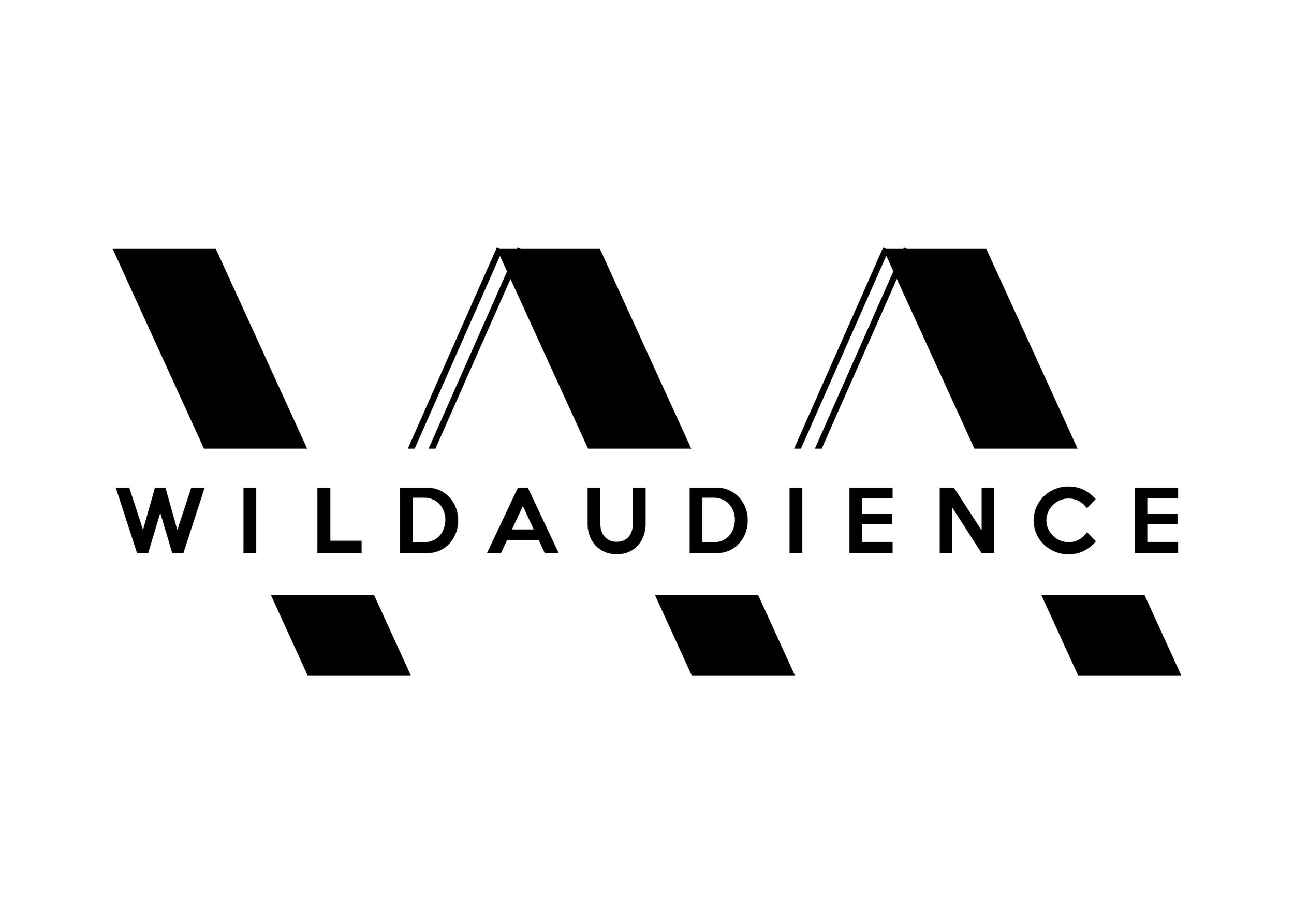 Wild Audience Logo-02.jpg