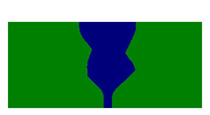 e2s medium.png