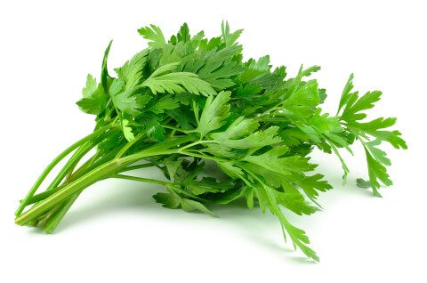 parsley-leaves-480x318.jpg