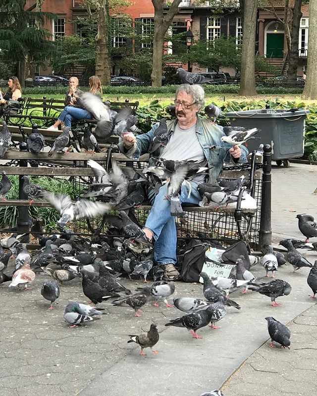 This gentleman was requesting donations to help him purchase pigeon food. Sunday in Washington Square, Park.  #onlyinnewyork, #ilovenewyork, #sundayinthepark, #pigeonsarebirdstoo, #sundaybrunch, #newyorkcity