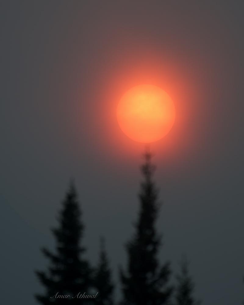 Sun 180823 Amar Athwal.jpg
