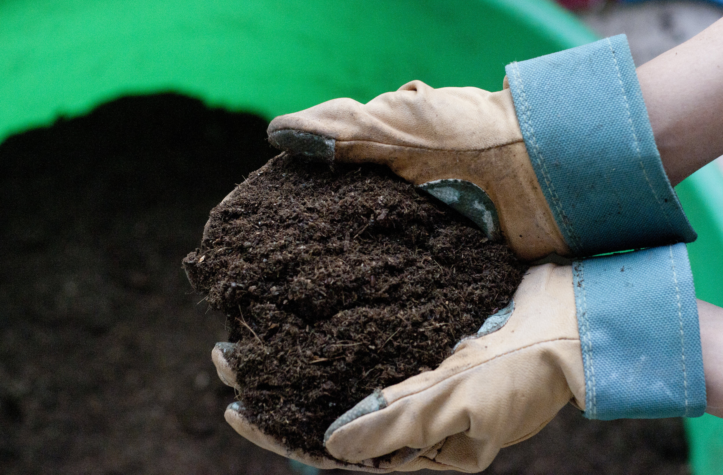 compost_2.jpg