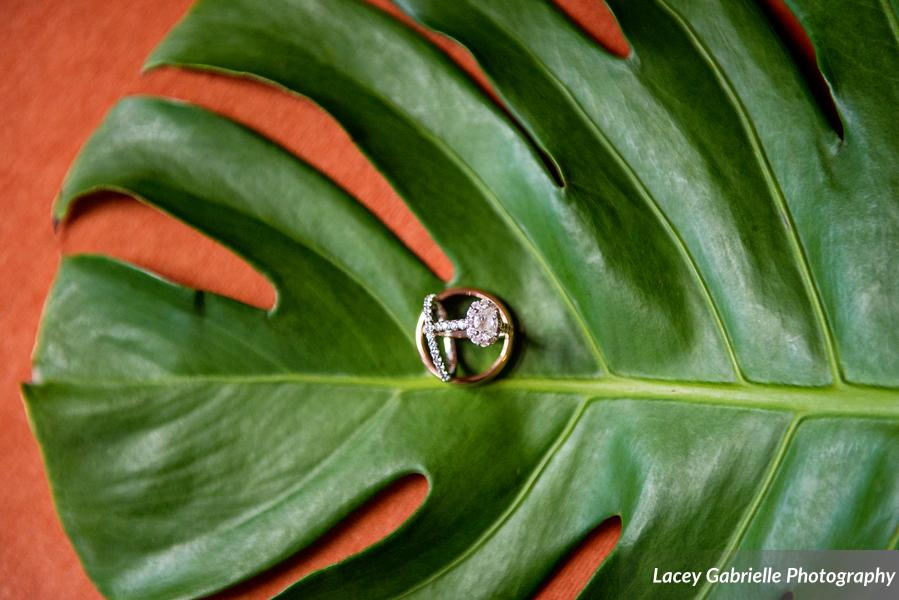 New Haven lawn club wedding monstera tropical rings.jpg