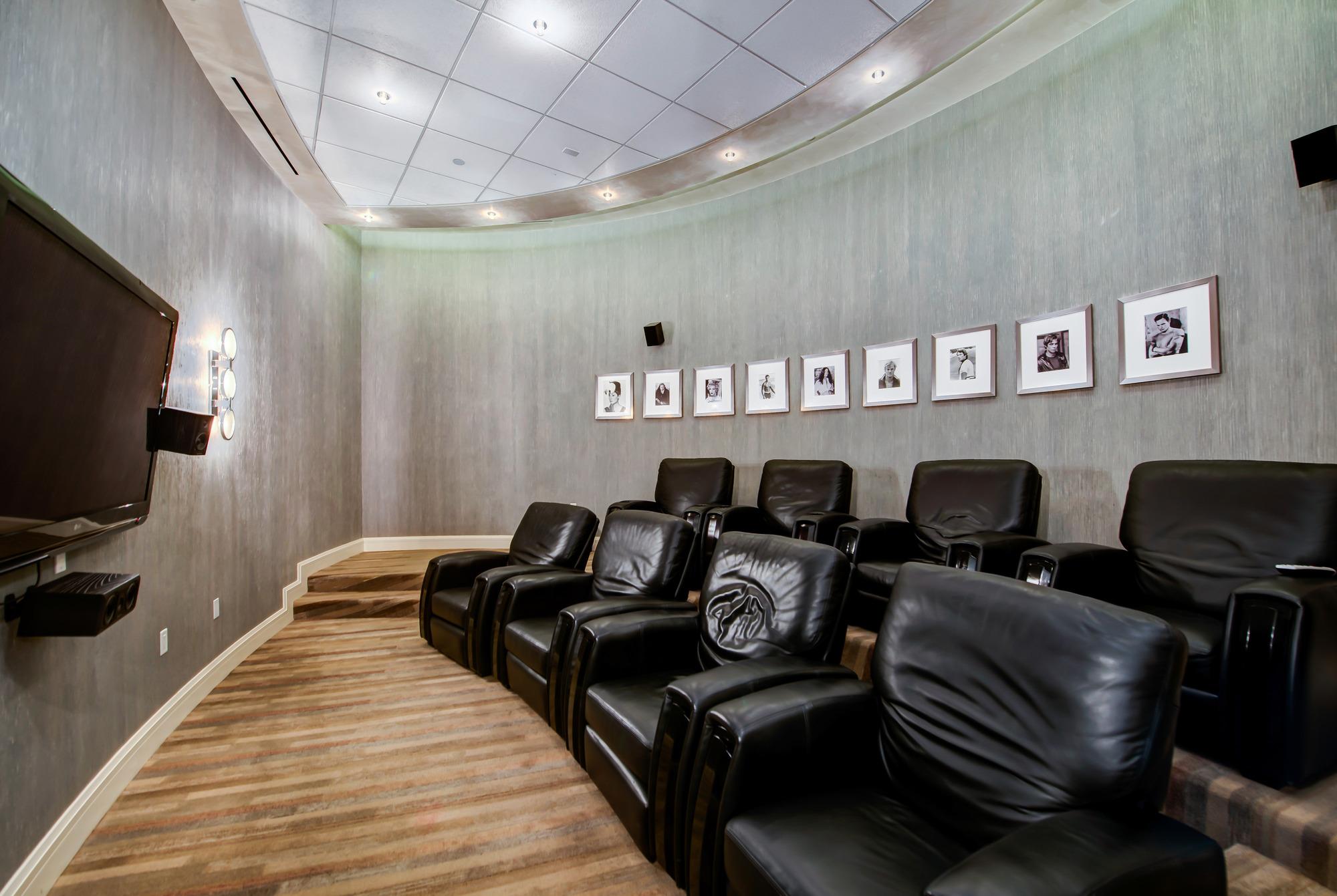 Theatre/Screening Room