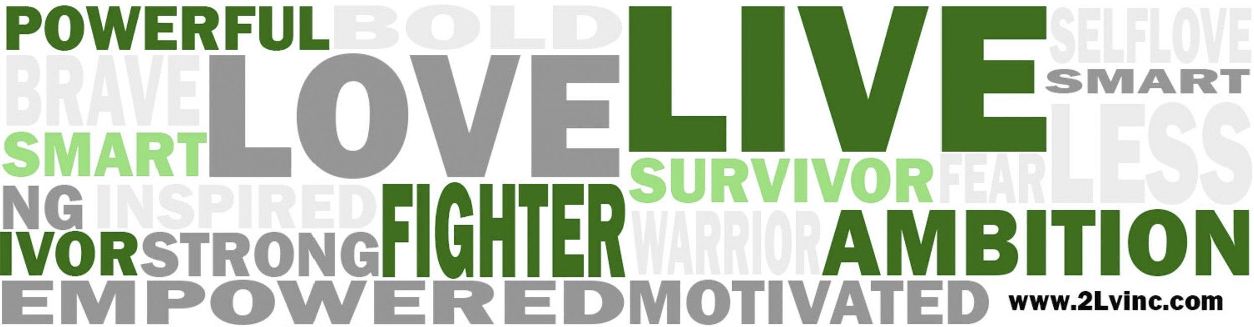 2Lv Inc Banner.jpg