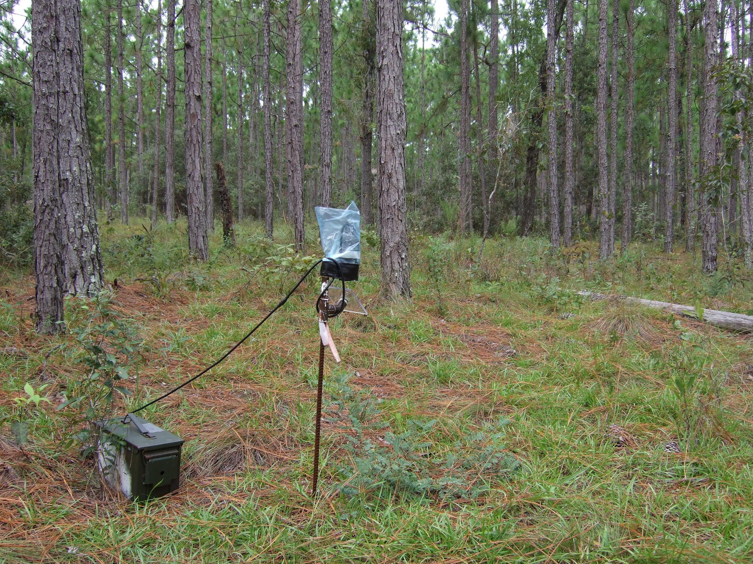 Field work Ordway 051.jpg
