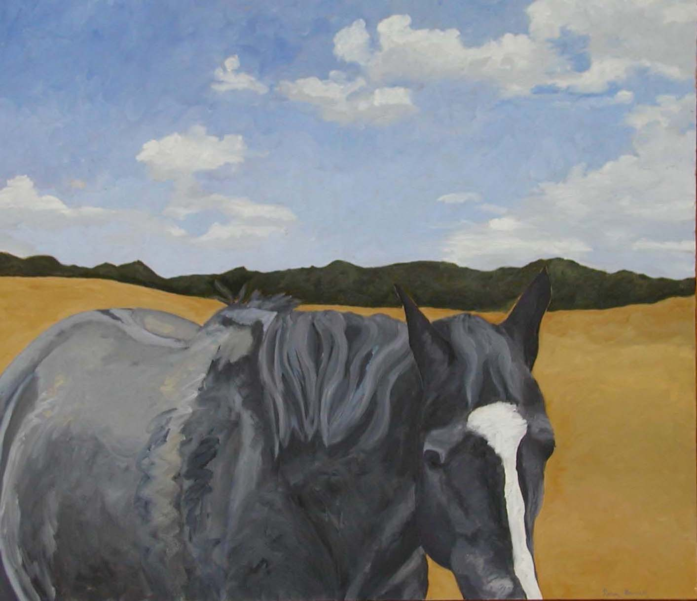 Black Horse, Summer Sky