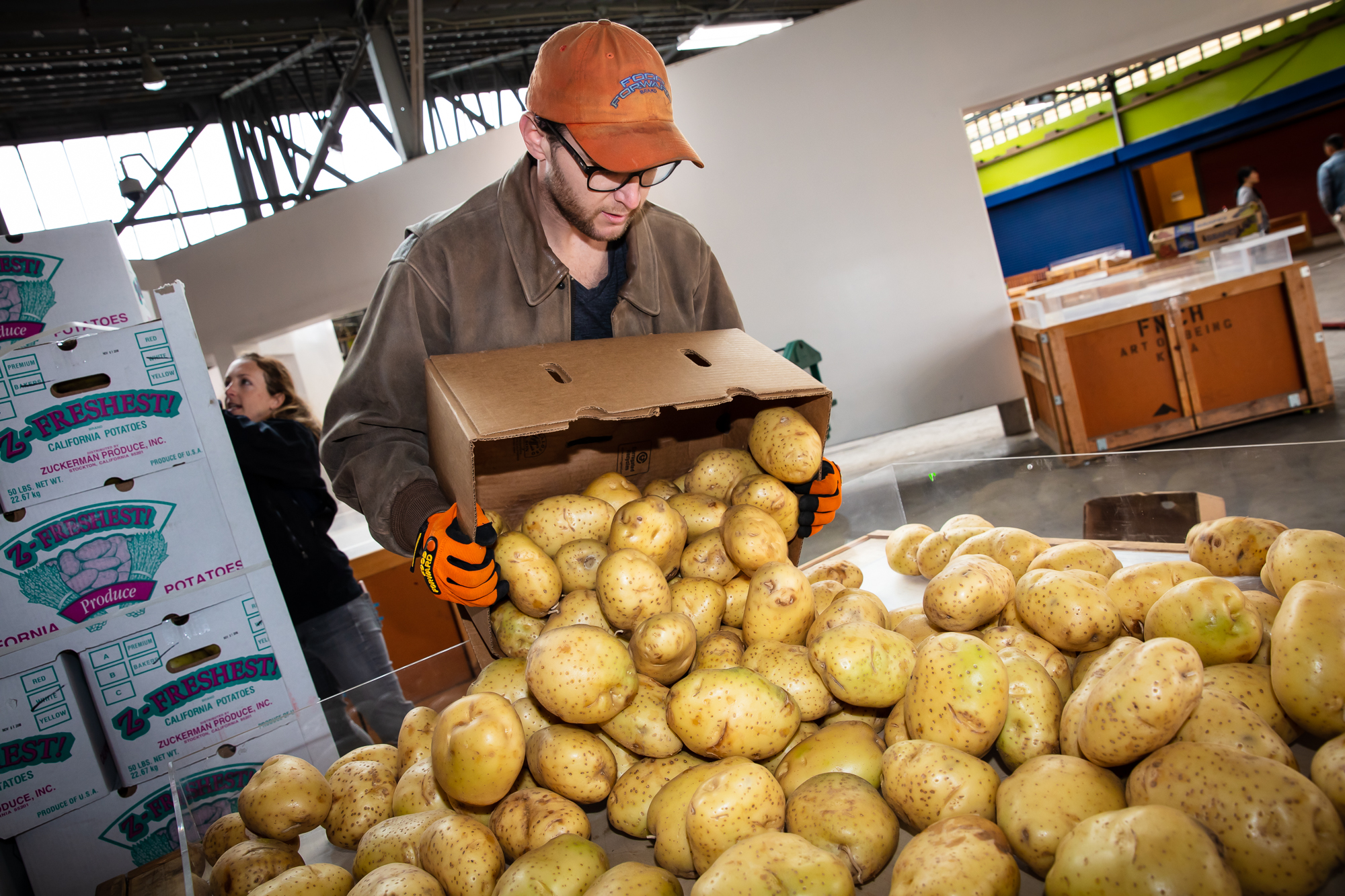 worker inspecting and sorting rescued potatoes