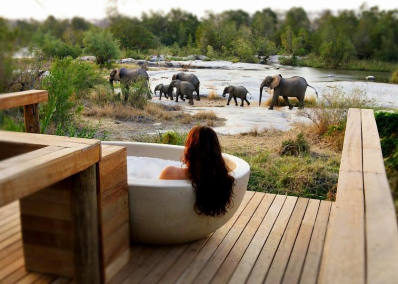 Luxury safari bath