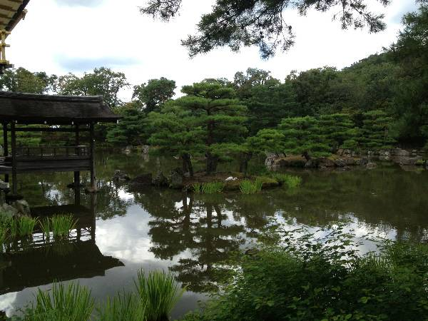 Japan has beautiful temples with sculpted grounds and we got to go on several tours of temples including the Golden Pavilion in Kyoto.