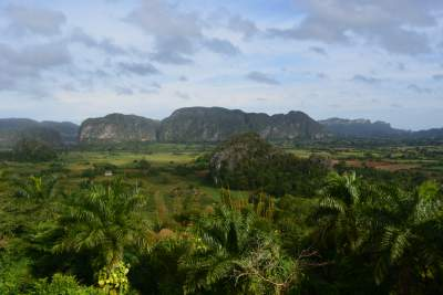 The Vinales valleyis a beautiful and lush valleyin Pinar del Río province