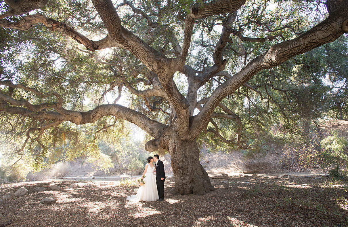 And here are Emi & David under the Great Oak :)