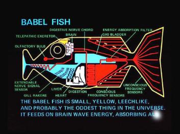 Babelfish diagram