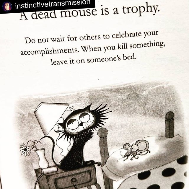 #Repost @instinctivetransmission ・・・ Cat wisdom.  Don't wait for others to celebrate your accomplishments. When you kill something leave it on someone's bed. 😂 #howtoarguewithacat #artofpersuasion #cat #catsandbooks #catsofinstagram #booksandcats #bookstagram #books #catlover #crazycatlady #teachers #englishteacher #middleschoolteacher #teaching #teachingideas