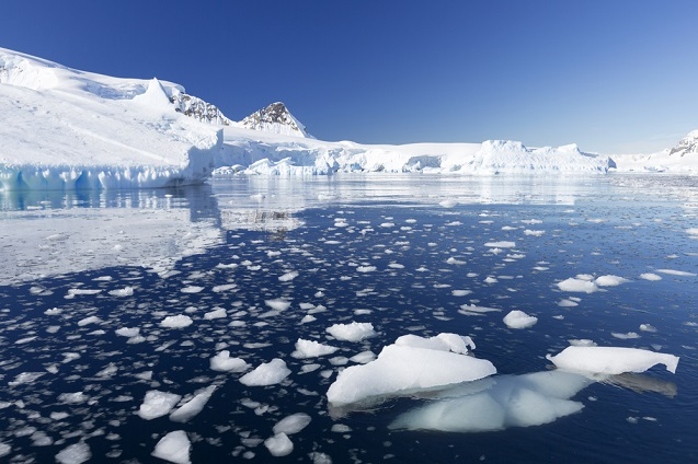 The Melting Antarctic