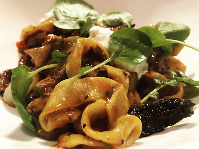 Braised Beef and Lamb Ragu cippollini onions, sun-dried tomatoes, house-made tagliatelle pasta, burrata cheese. - ~ - ~ - #steamboatsprings #mambosteamboat #mamboitaliano #steamboat dining #steamboatmagazine #routtcounty #yampavalley #steamboatresort #explorecolorado #exploresteamboat #northwestcolorado #visitsteamboat #steamboat #colorado #ilovesteamboat #ilovecolorado  #italianfood #ragu #cippolini #tagliatelle #ilovepasta #pasta