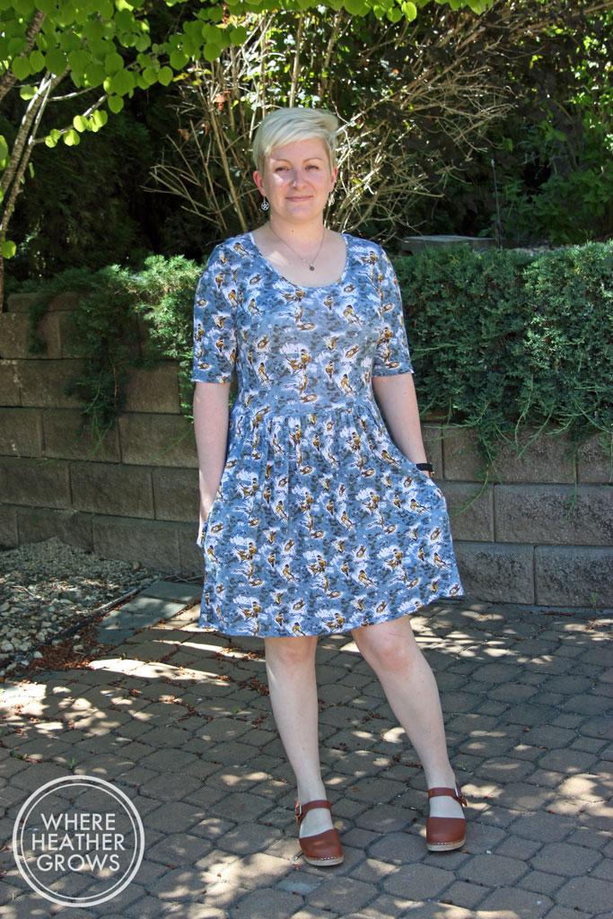 Sew Caroline Out & About Dress